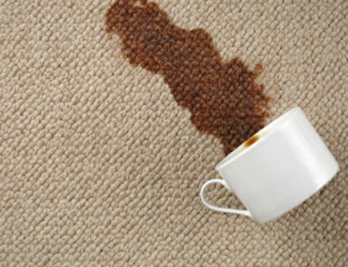 5 Most Effective Carpet-Cleaning Tips