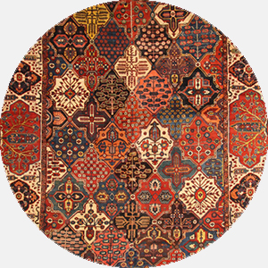 Multicolor Rugs rugs