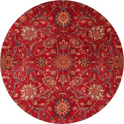 Traditional Rugs rugs