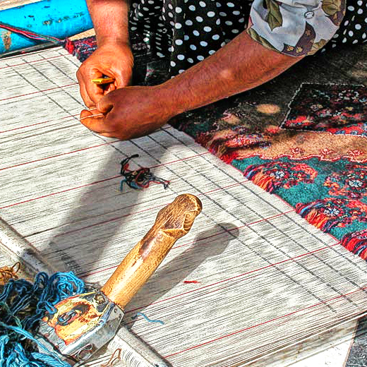 Hand Woven Rugs rugs