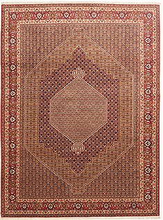 "Sanandaj Red Hand Knotted 8'5"" X 11'3""  Area Rug 100-10771"