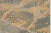 Nourison NEPAL Beige 79 X 1010 Area Rug 99446152473 805-101124 Thumb 5