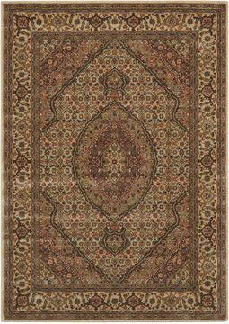 Nourison PERSIAN ARTS Beige Rectangle 2x4 ft polyester Carpet 102528