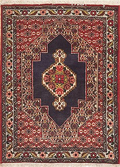 Persian Sanandaj Red Rectangle 3x4 ft Wool Carpet 11960