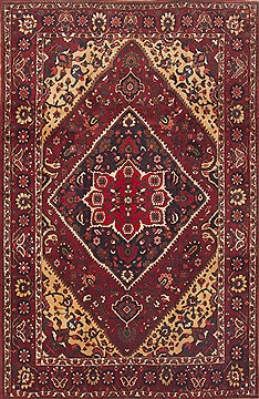 Persian Bakhtiar Red Rectangle 7x10 ft Wool Carpet 12312