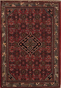 Persian Hamedan Red Rectangle 3x5 ft Wool Carpet 12591