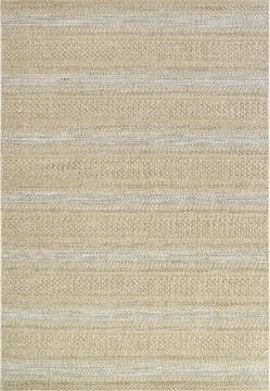 "Dynamic COASTAL Beige 3'11"" X 5'7"" Area Rug CQ463856810 801-120646"