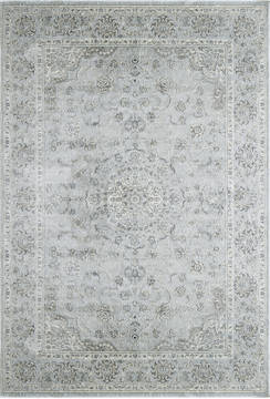 Dynamic ISFAHAN Grey Rectangle 4x6 ft  Carpet 121424