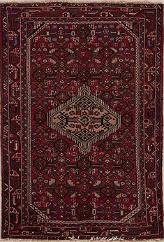Persian Hamedan Red Rectangle 3x5 ft Wool Carpet 13339