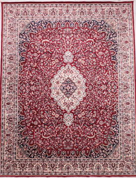 "Mahi Red Hand Knotted 9'3"" X 12'0""  Area Rug 905-135743"