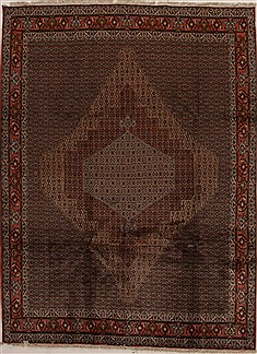 "Sanandaj Multicolor Hand Knotted 8'6"" X 11'6""  Area Rug 100-14926"