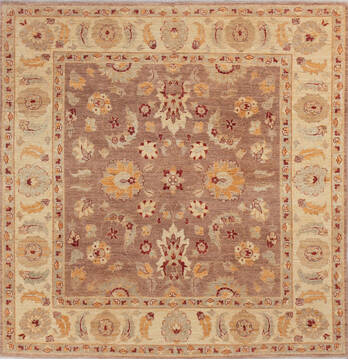 "Gabbeh Brown Square Hand Knotted 6'7"" X 6'9""  Area Rug 700-143449"
