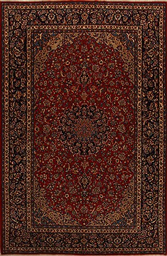 "Najaf-abad Red Hand Knotted 9'6"" X 14'11""  Area Rug 251-15675"