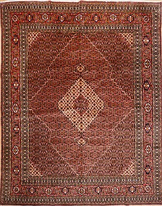 Persian Sarab Red Rectangle 10x13 ft Wool Carpet 16300