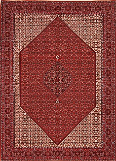 "Bidjar Red Hand Knotted 8'3"" X 11'8""  Area Rug 100-21194"