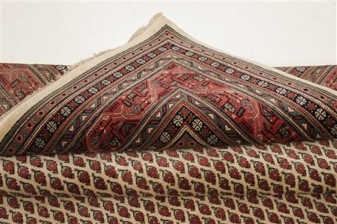 Indian Agra Beige Square 8x10 Ft Wool Carpet 21779 Sku 21779