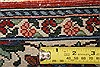 Bakhtiar Multicolor Hand Knotted 48 X 68  Area Rug 100-22742 Thumb 7