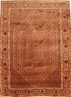 "Bidjar Brown Hand Knotted 6'9"" X 9'4""  Area Rug 100-23241"