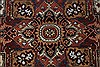 Serapi Brown Hand Knotted 311 X 511  Area Rug 250-27248 Thumb 8