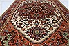 Serapi Brown Hand Knotted 211 X 410  Area Rug 250-27409 Thumb 8