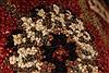 Jaipur Black Hand Knotted 26 X 40  Area Rug 250-28234 Thumb 6