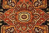 Serapi Brown Hand Knotted 311 X 511  Area Rug 250-28394 Thumb 1