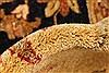 Pishavar Beige Hand Knotted 120 X 1411  Area Rug 250-28508 Thumb 8