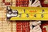 Pishavar Beige Hand Knotted 28 X 42  Area Rug 250-28968 Thumb 5