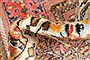 Bakhtiar Multicolor Hand Knotted 85 X 1011  Area Rug 255-30185 Thumb 14