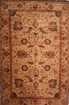 Agra Brown Hand Knotted 11 X 18 3 Area Rug 155 Indian